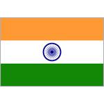 The India logo